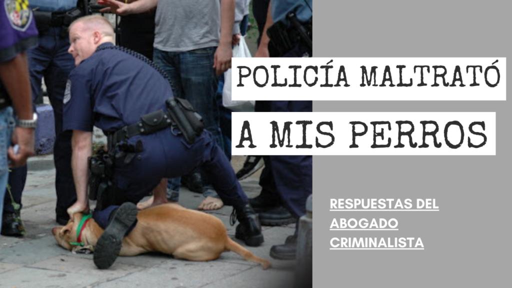 POLICÍA MALTRATÓ A MIS PERROS