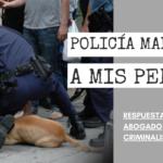 ¿QUÉ HAGO SI LA POLICÍA MALTRATÓ A MIS PERROS?